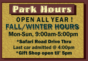 Winter Hours 2018