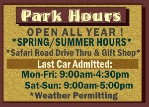 spring-hours-2016