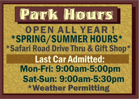 Arbuckle Wilderness Park Hours Spring Summer 2016