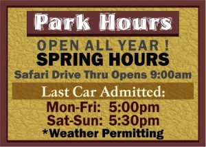 SPRING-hours-2020