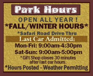 fall-winter-hours-2020